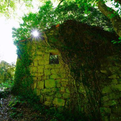 Corsica / Raw Nature
